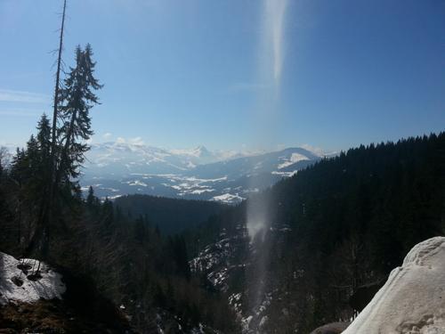 schleier-500-2