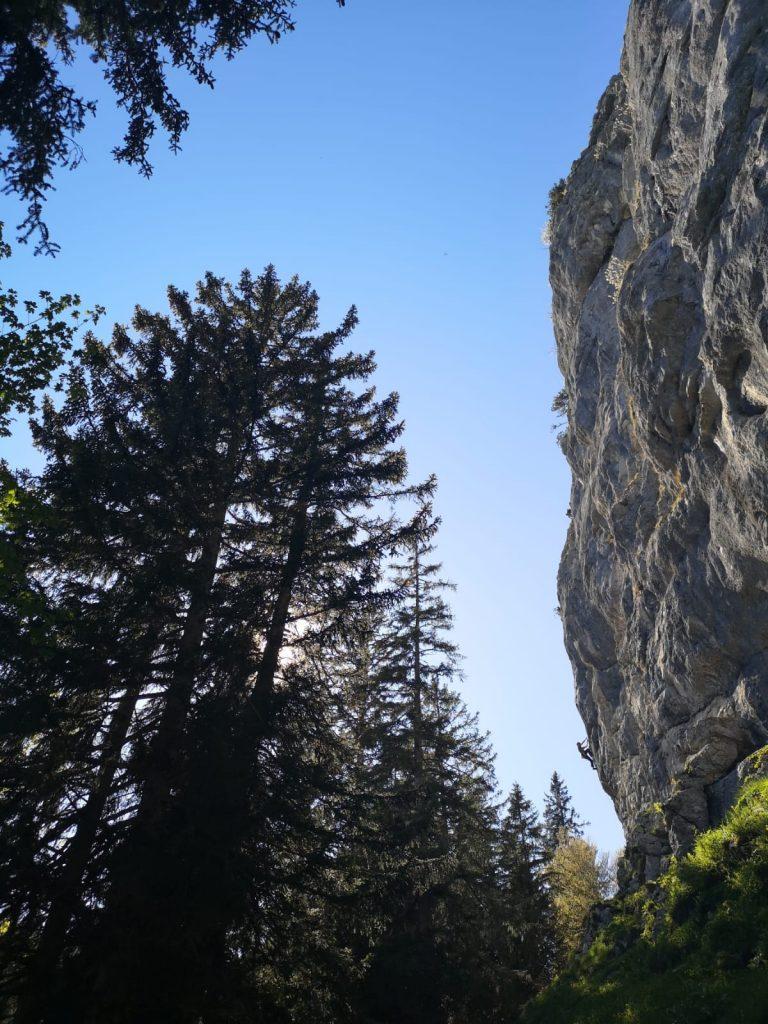 Der Sektor Parterre bietet mit den schönsten Fels der gesamten Krettenburg. Nils klettert Pilastro; Foto: Jo Stark